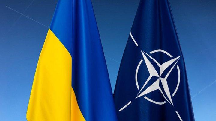 У США хочуть, щоб Україна негайно стала членом НАТО
