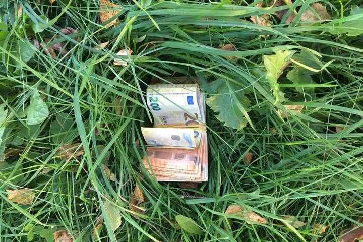 Понад €9000 знайшли прикордонники у траві біля кордону з Румунією