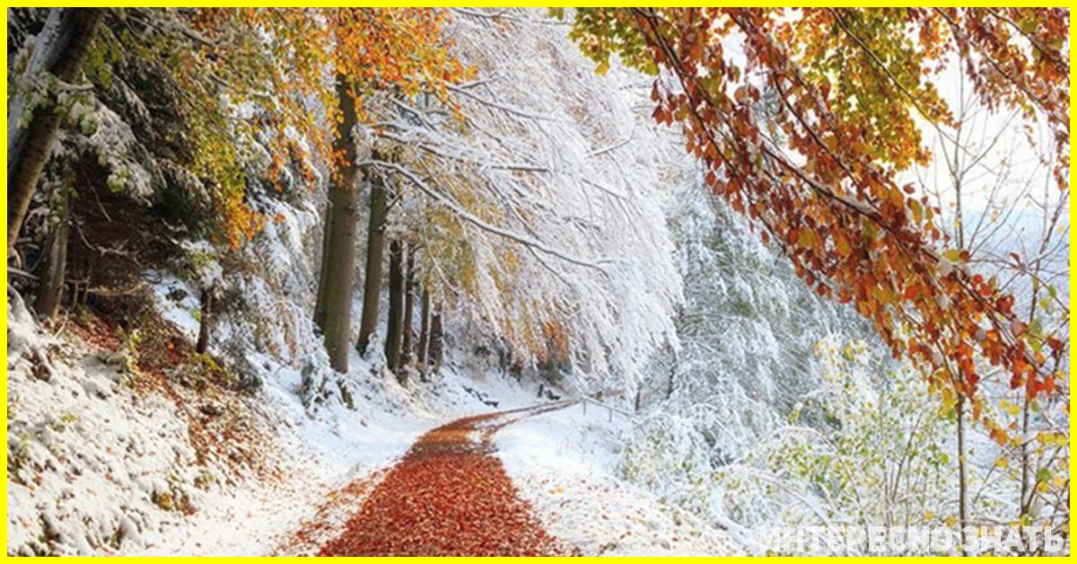 Готуйтесь, почнеться зима: синоптики шокували погодою на жовтень