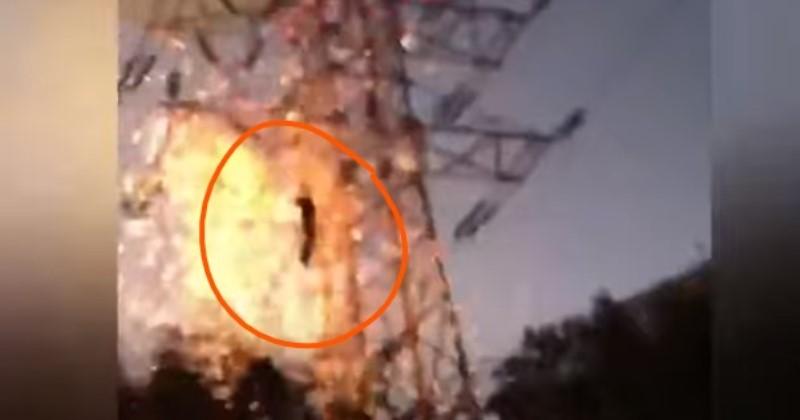 """""""Шоковані люди кричали, він корчився і горів"""": чоловік вирішив похизуватися перед натовпом і зробив страшну річ (відео 18+)"""