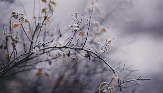 Наскільки теплою буде зима: українців попередили про аномальну погоду