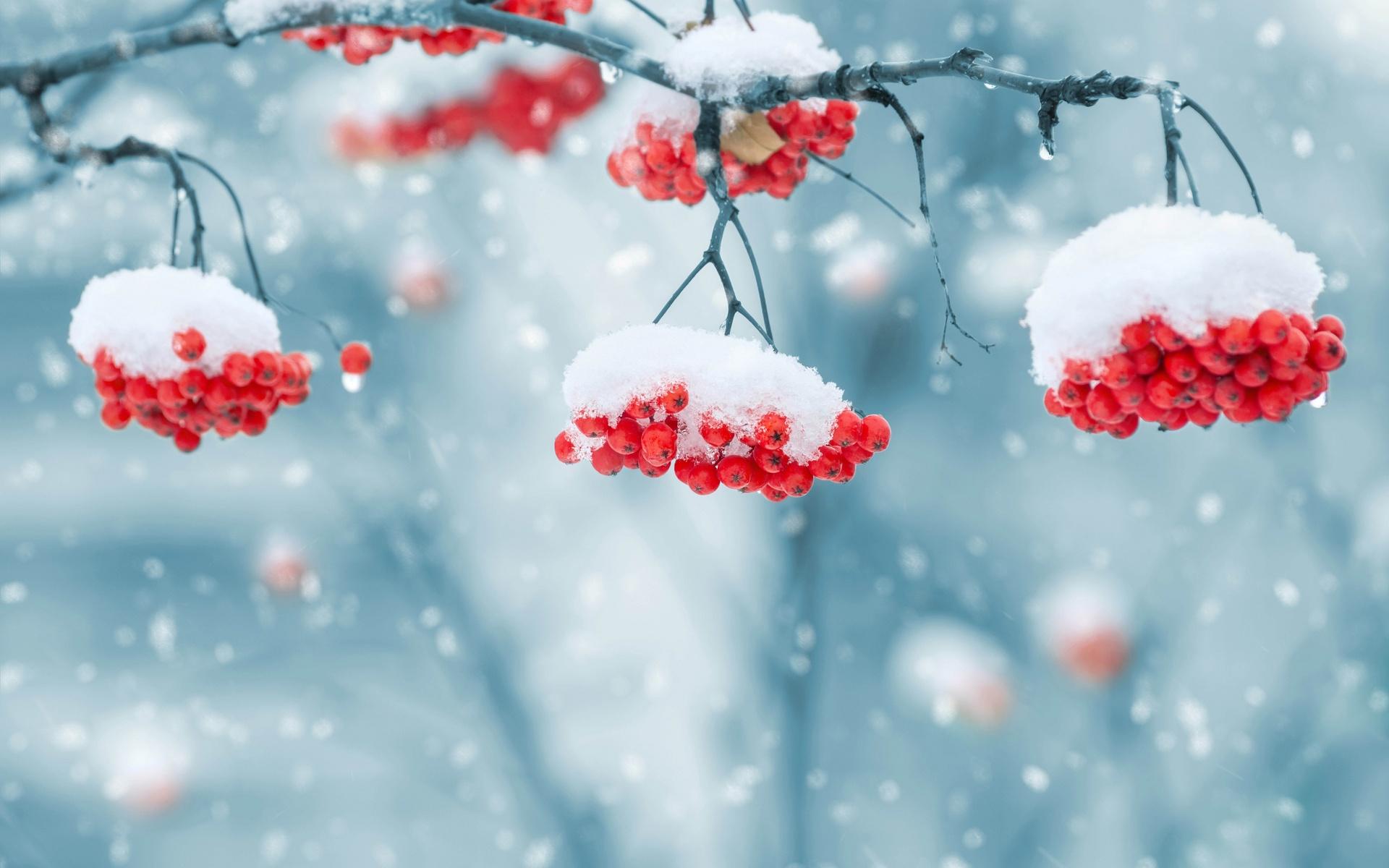 Синоптик розповів, коли в Україну прийдуть морози -15°