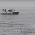 Ніхто не вижив: на Черкащині знайшли тіла рибалок і 10-річного хлопчика, які провалилися під лід