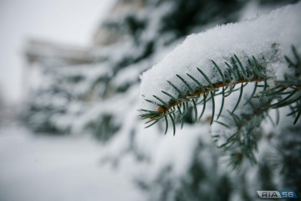 Морози до -15: синоптики повідомили про серйозне похолодання