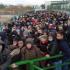 На кордоні з Польщею – завал: Гігантський натовп українців, які рвуться працювати. Без масок? (ФОТО)