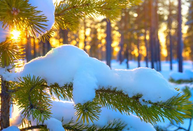 Синоптик назвала дату потепління в Україні