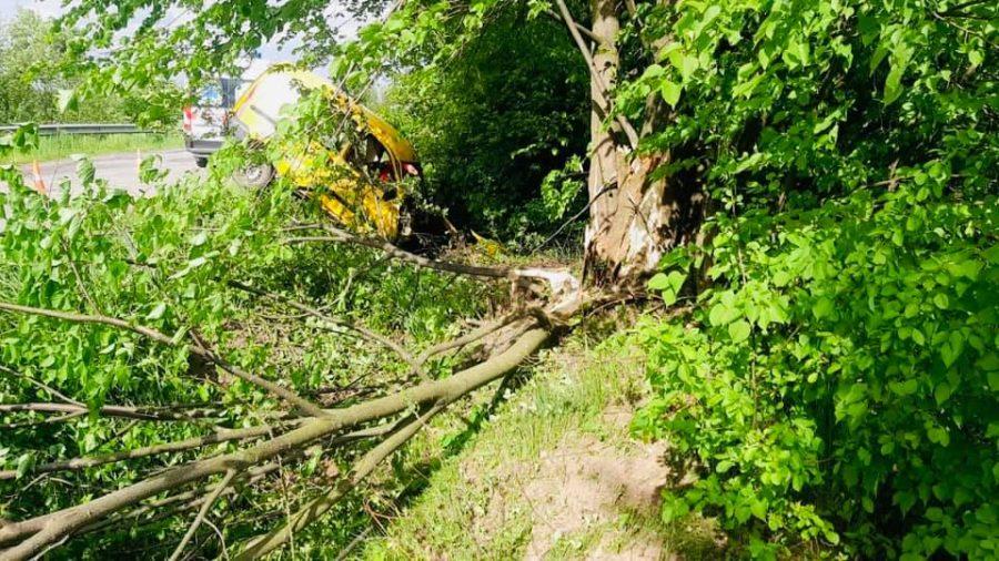 Загинув на місці: на Прикарпатті автівка врізалася в дерево