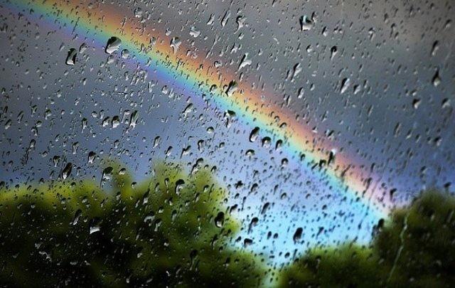 Спека не прийде: червень в Україні буде дощовим