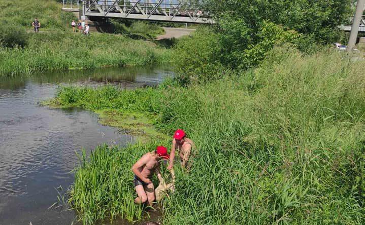 На Львівщині в річці втопився 14-річний хлопець