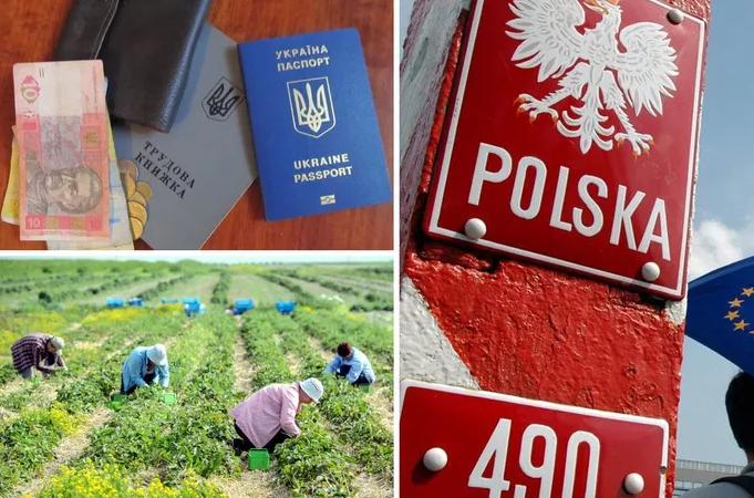 У Польщі підвищать мінімалку: скільки зароблятимуть українські заробітчани