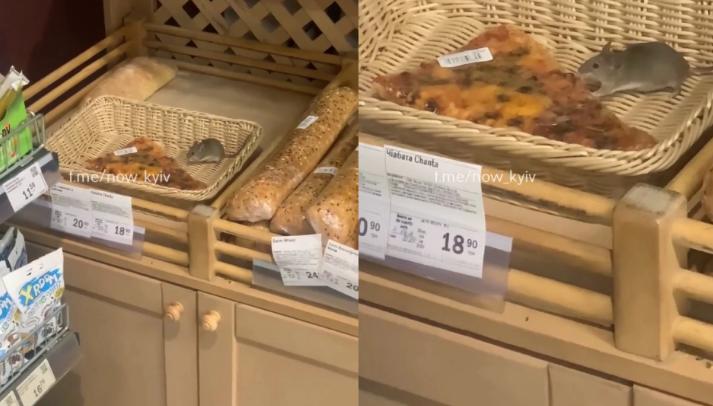 Покупцям було не до сміху: у супермаркеті миша на прилавку нахабно наминала продукти (ВІДЕО)