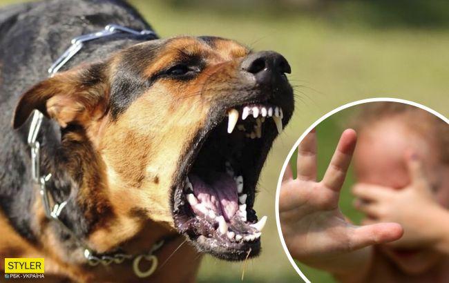 """У Сумах охоронець будмайданчика нацькував собак на чоловіка з 8-річною дочкою: """"рви на шматки"""""""