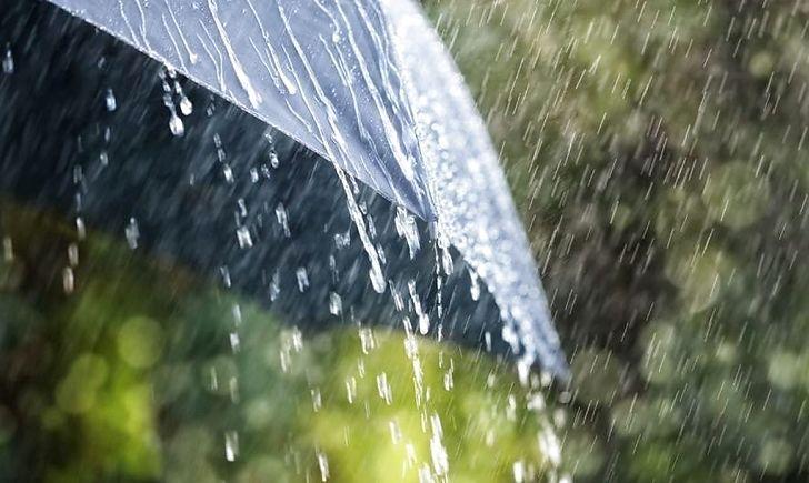 В Україні збережеться тепла дощова погода