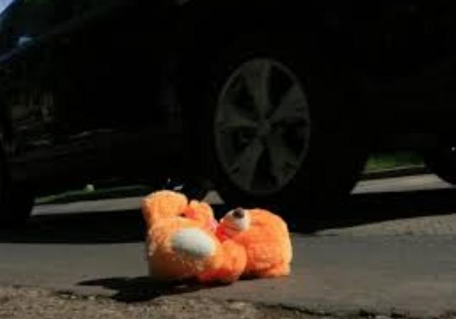 """""""Раптом вибігла на дорогу"""": 2-річна дівчинка померла внаслідок наїзду авто"""