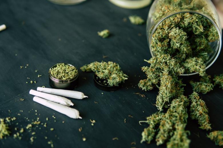 В українських аптеках будуть продавати марихуану: в чому плюси легалізації